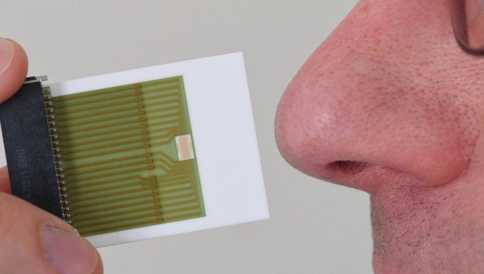 Geruchssensor und menschliche Nase