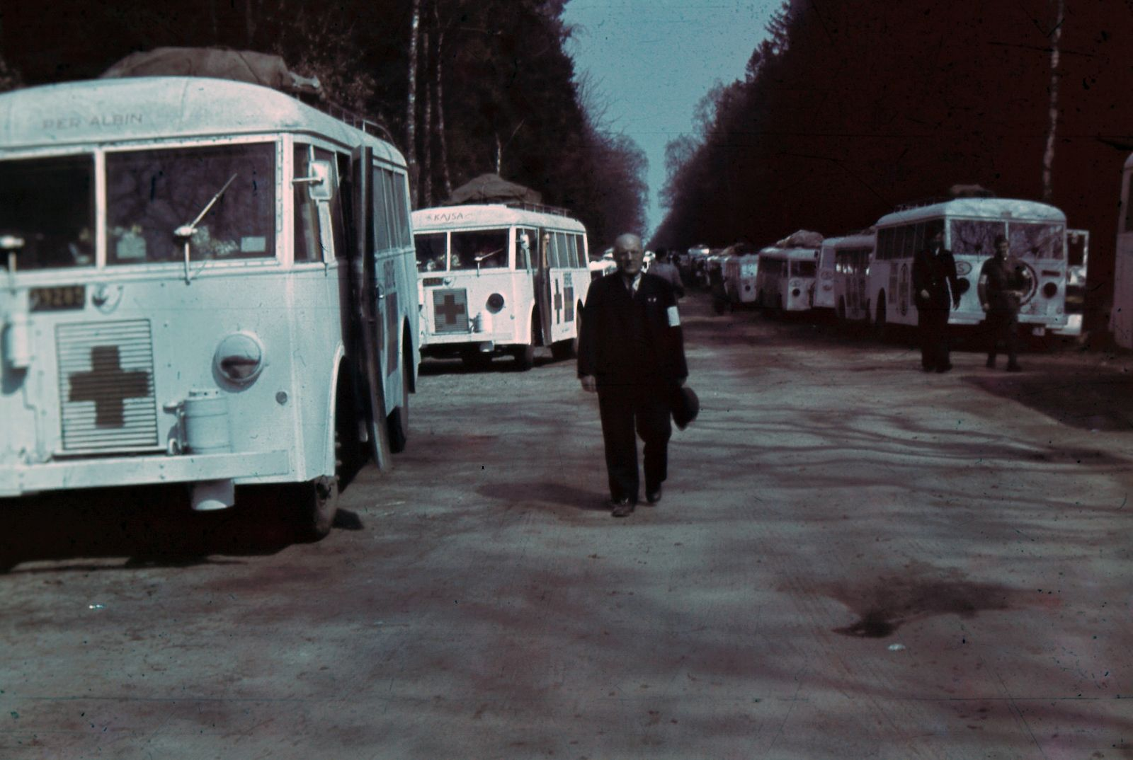 Wanted_Information_about_The_White_Buses_-_2