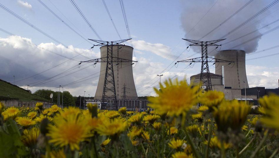 Französisches AKW Cattenom: Hacker sollen Angriffe auf Energieversorger geplant haben