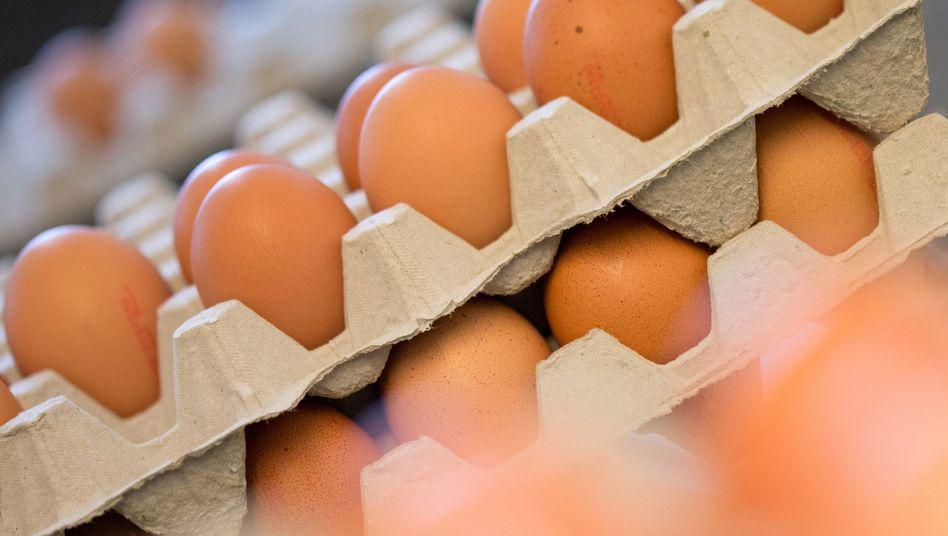 Die Preise für Eier sind zu Jahresbeginn gestiegen