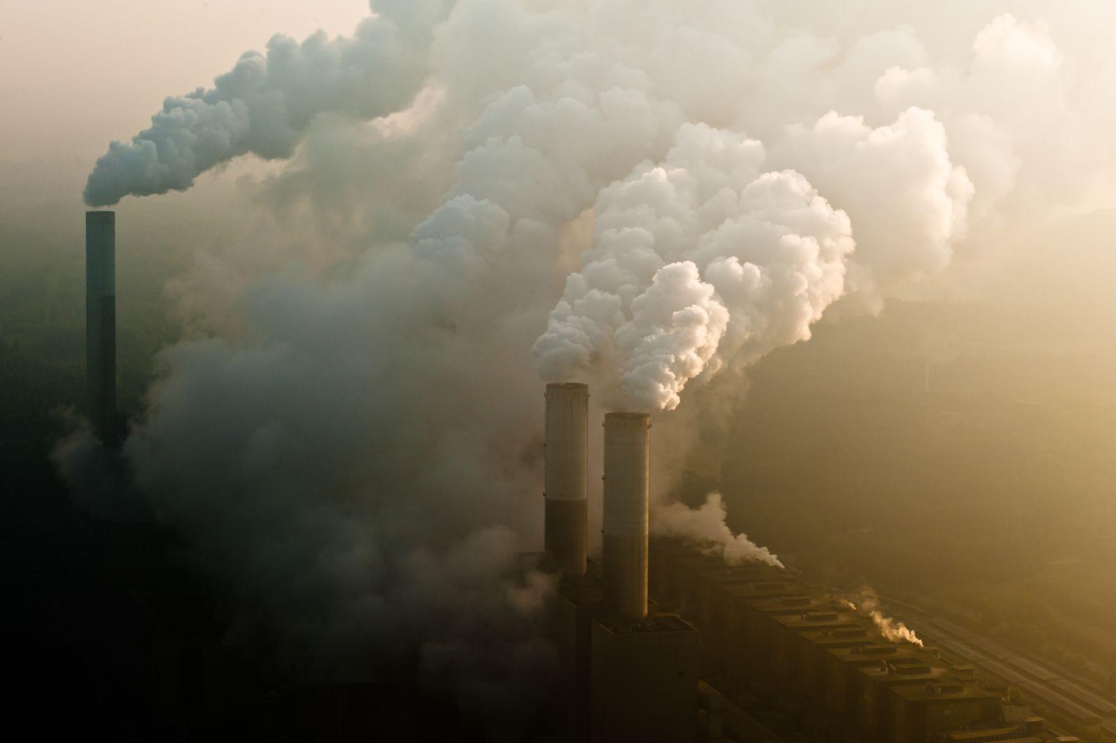 EINMALIGE VERWENDUNG Klimapaket