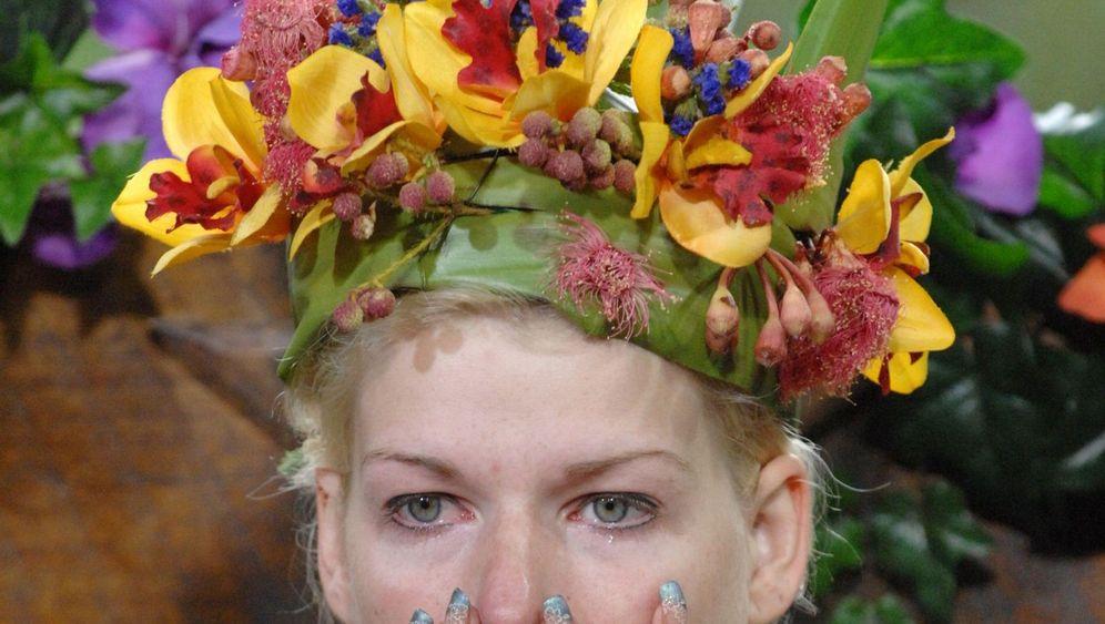 Dschungelcamp-Finale: Nasenbeutler schlägt Wasserspinne