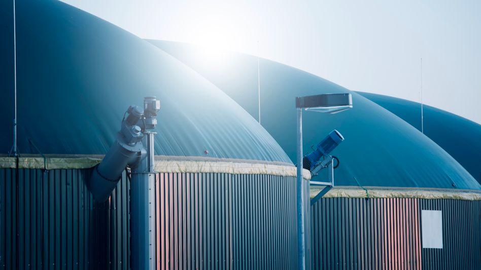 Biogasanlage in Deutschland: Unter den Kuppeln setzen Mikroorganismen beim Abbau organischer Stoffe Kohlenhydrate, Eiweiße und Fette in Methan und Kohlenstoffdioxid um.