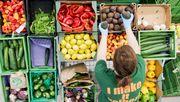 EU-Kommission setzt auf Öko-Landwirtschaft