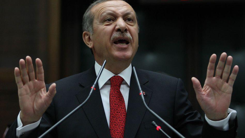 Türkischer Premier Recep Tayyip Erdogan: Revolte gegen den Sultan