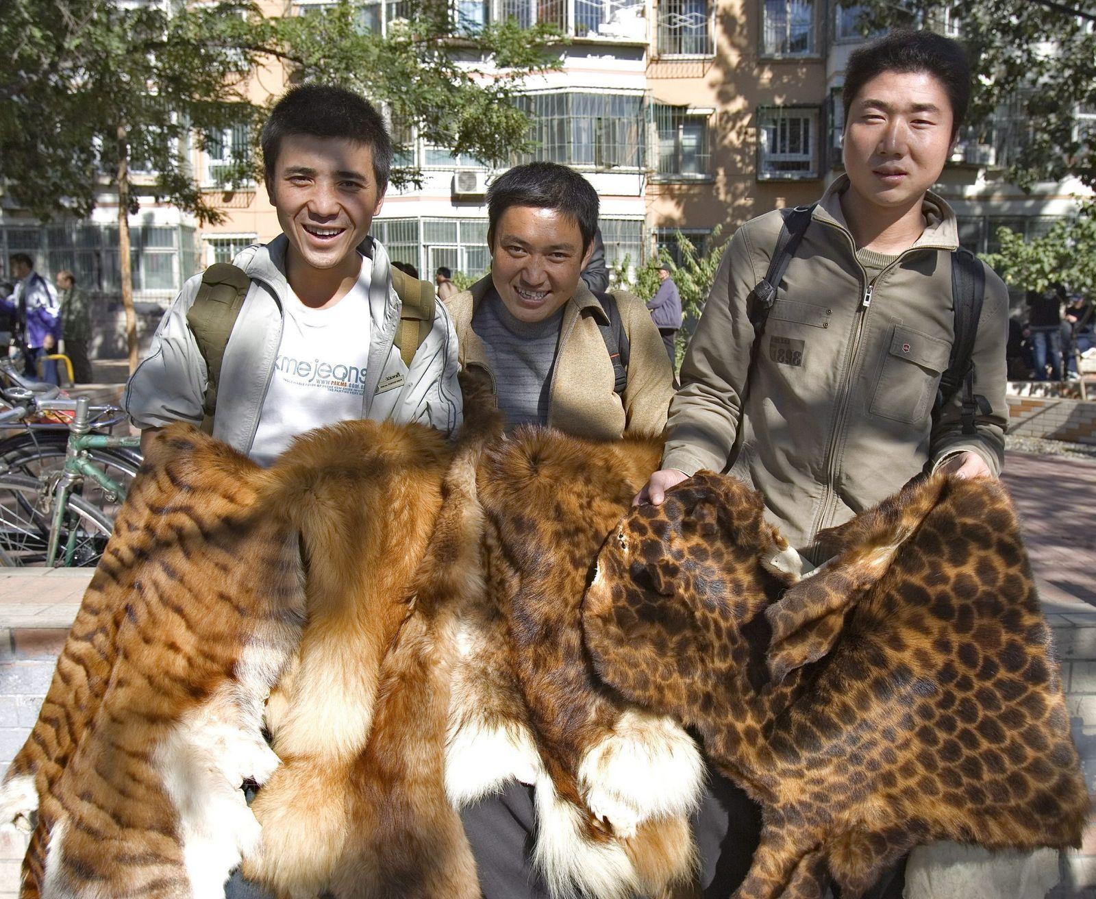 Handel mit Tiger- und anderen Tierfellen in Peking