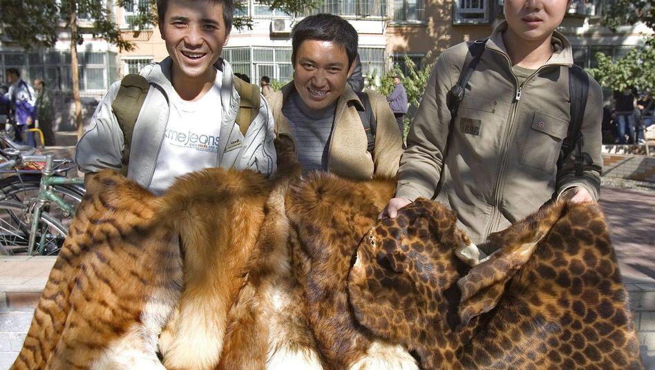 Männer zeigen Tiger- und andere Wildkatzenpelze (Archiv-Bild aus 2006)