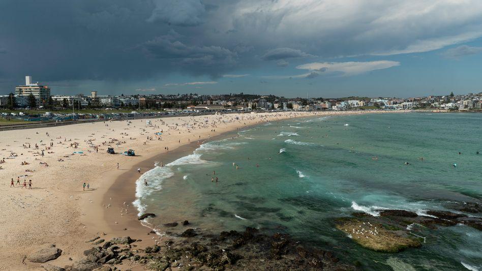 Strand nahe Sydney (Archivbild): Herrenlose Schwimmflossen im Ozean