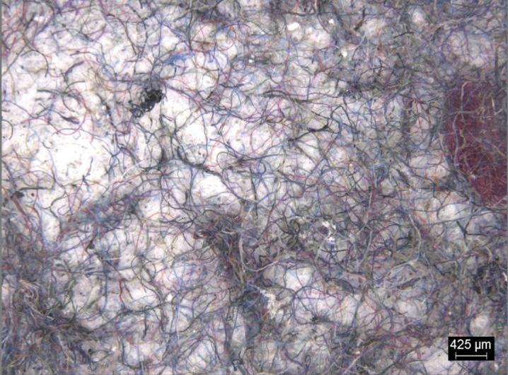 Bei der Wäsche freigesetzte Mikrofasern unter dem Mikroskop