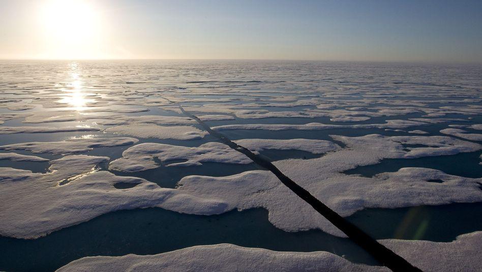 Eis vor kanadischer Küste: Extremste Szenarien weniger wahrscheinlich