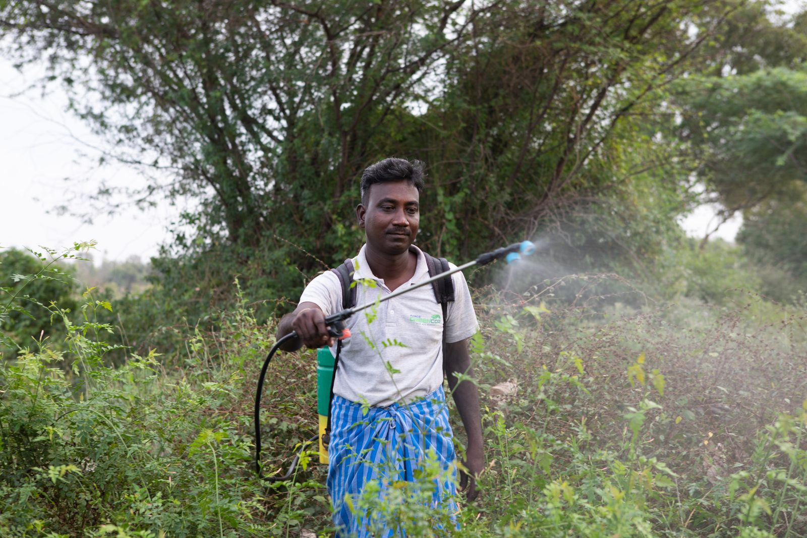 12th Jan 2021, Thalavedu village, Tiruttani Thaluk,Thiruvallur district in Tamil Nadu, India. Sukumar mixes water with the pesticide. Pesticides are used to prevent insects, to make the flowers larger, to flowers bloom etc. He spray toxic chemicals wearing only a traditional wraparound (lungi) or and cover their mouth and nose with a piece of cloth—basically ineffectual against pesticide fumes. Photographer: Samyukta Lakshmi.