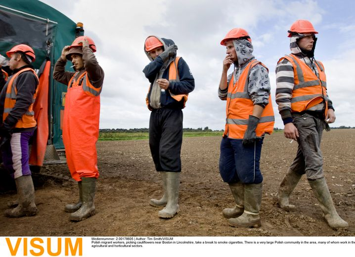 Polish seasonal workers in Britain