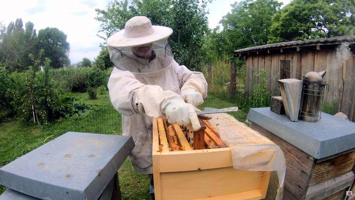 """Ralf Roesberger: """"Mein jüngerer Sohn hat mit elf Jahren seinen ersten Bienenschwarm mit 20.000 Bienen eingefangen"""""""