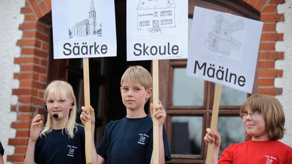 Schüler demonstrieren auf Saterfriesisch: In Niedersachsen wird die Sprache wieder gelehrt