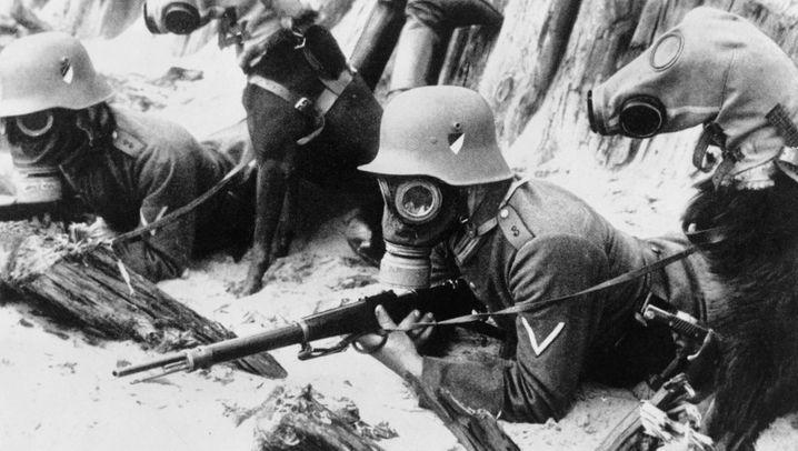 Pferde, Ratten, Elefanten: Auf vier Beinen in die Schlacht