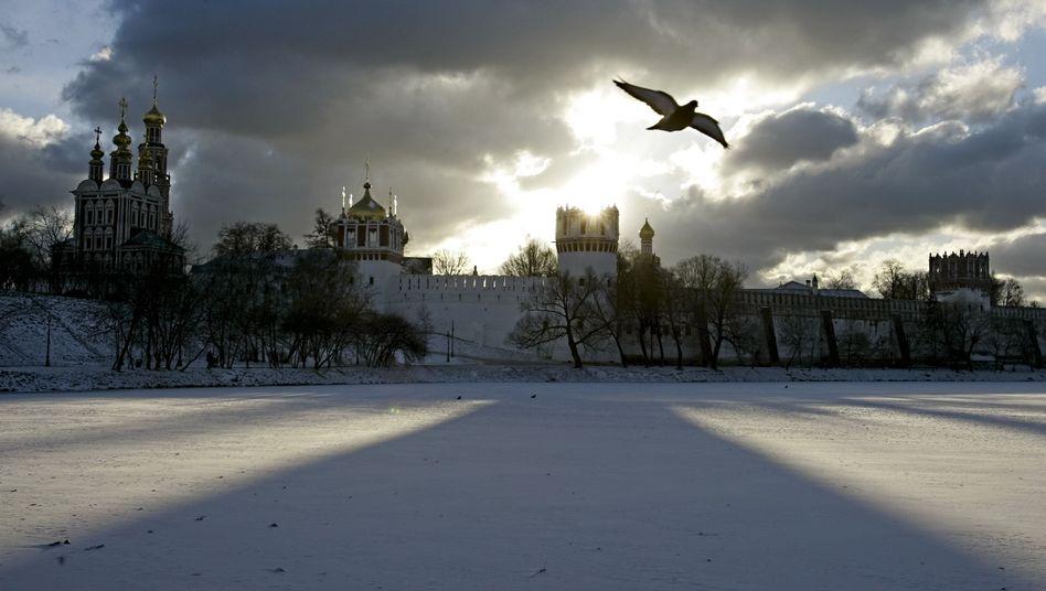Eine Taube über Moskau (Archivbild): Sterbende Vögel auf den Straßen der Stadt
