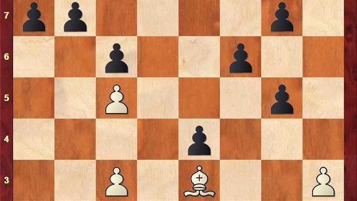 Schach-Partie zwischen Viswanathan Anand und Sergej Karjakin