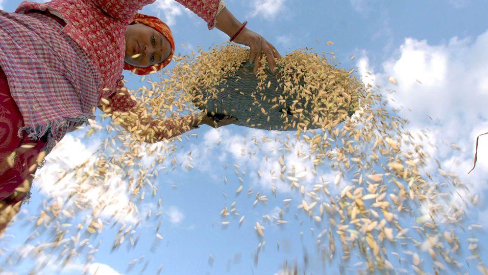 Landwirtschaft: Schuften im Dienst einer hungrigen Welt