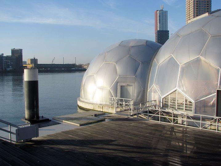 Floating Pavilon in Rotterdam