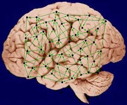 Neuronales Netzwerk: Komplexes Zusammenspiel
