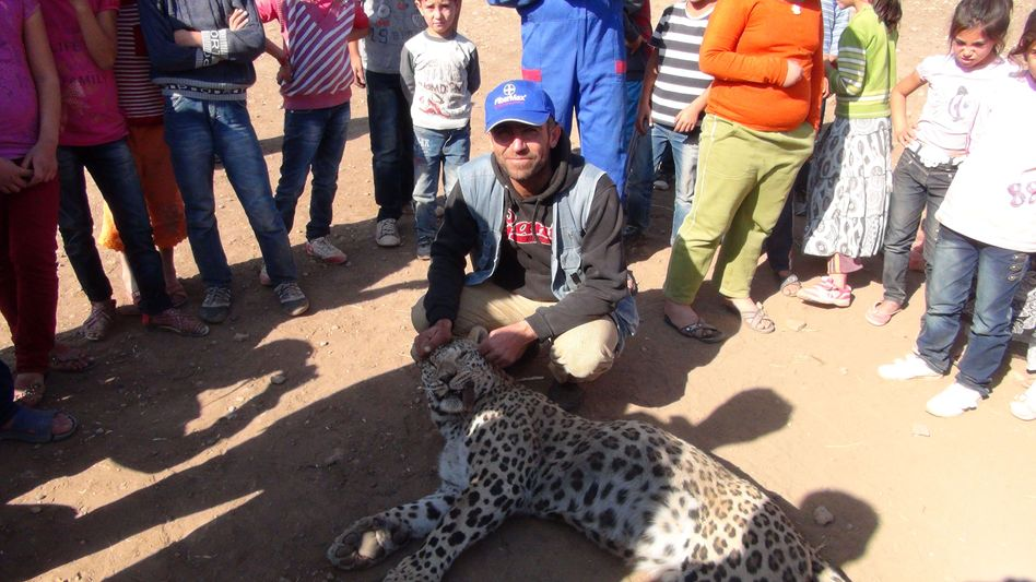 Cinar nahe Diyarbakir: Leopard nach Angriff getötet