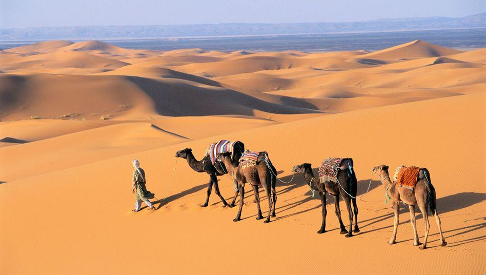 Wüstentour in Marokko: ein perfektes Reiseziel, um dem Winter zu entfliehen