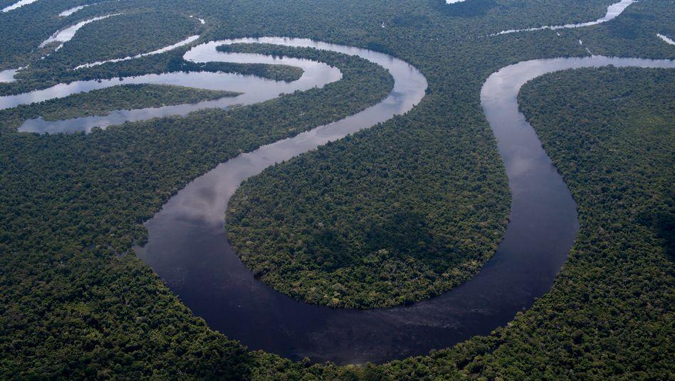 Der Nanay-Fluss im peruanischen Amazonasgebiet (Symbolbild): Indigene sehen sich durch die Ölförderung bedroht