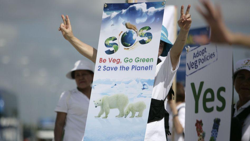 Umweltschützer in Cancún: Kleine Inselstaaten drängen auf Klimaschutzabkommen