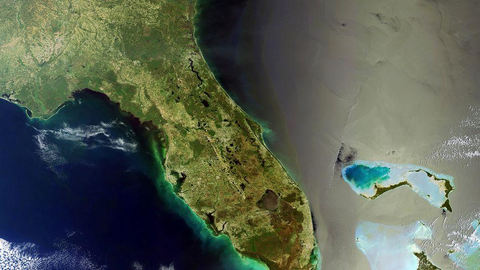 Straße von Florida (Archivbild aus dem April 2010): Wieder Öl vor der Küste?