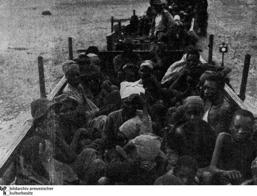 Захваченные гереро во время транспортировки в Свакопмунд