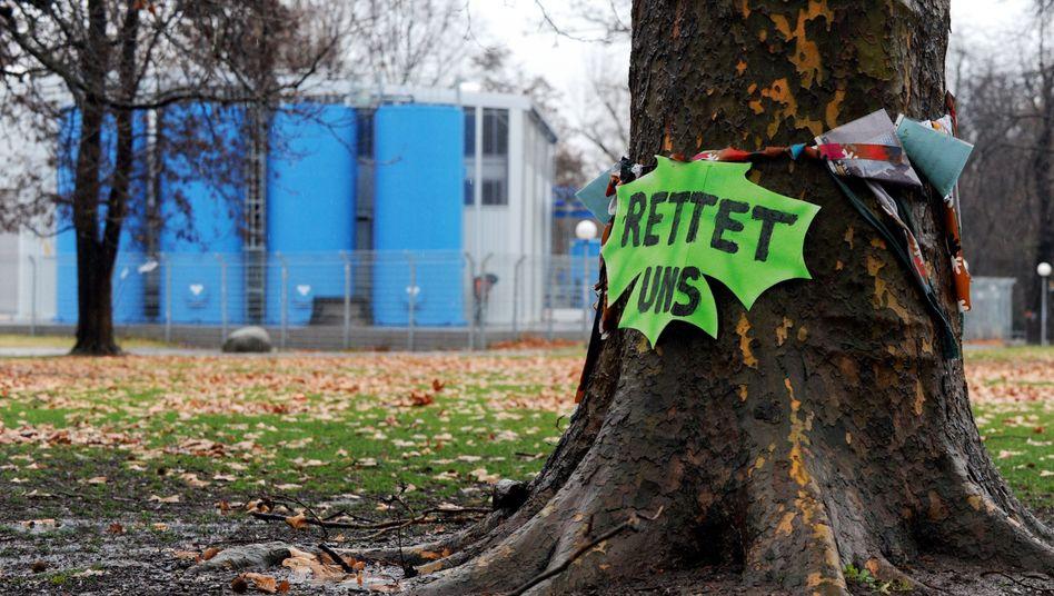 """Baum auf der Baustelle Stuttgart 21: """"Wir befinden uns in Alarmstimmung"""""""