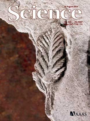 """Fachmagazin """"Science"""": Exklusives Copyright an die Verlage"""