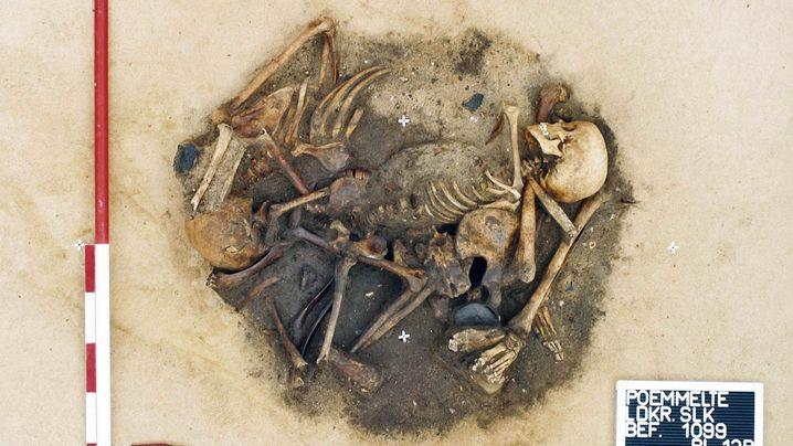 Ringheiligtum: Die Toten von Pömmelte