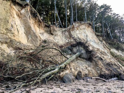 Der steigende Meeresspiegel beschleunigt die Küstenerosion, wie hier an der Ostsee bei Warnemünde