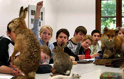 Verwerfliche Lehrinhalte? Bio-Unterricht an einem deutschen Gymnasium