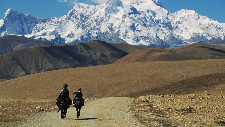 Shisha Pangma im Himalaja: Bergsteiger nach Lawinenunglück vermisst