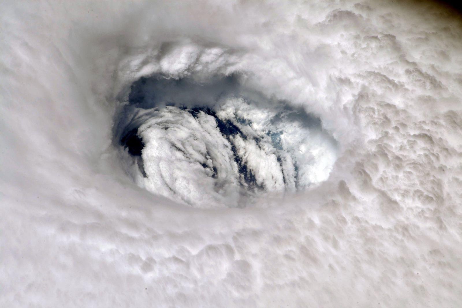 EINMALIGE VERWENDUNG Newsletter/ KW 37/ Hurricane Dorian