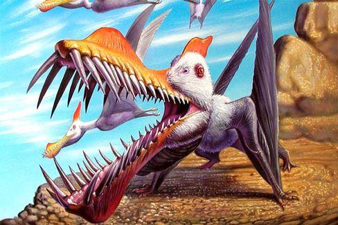 Caulkicephalus trimicrodon: Furcht erregendes Gebiss