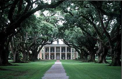 """Die berühmteste Eichen-Allee der Südstaaten auf der """"Oak Alley Plantation"""""""