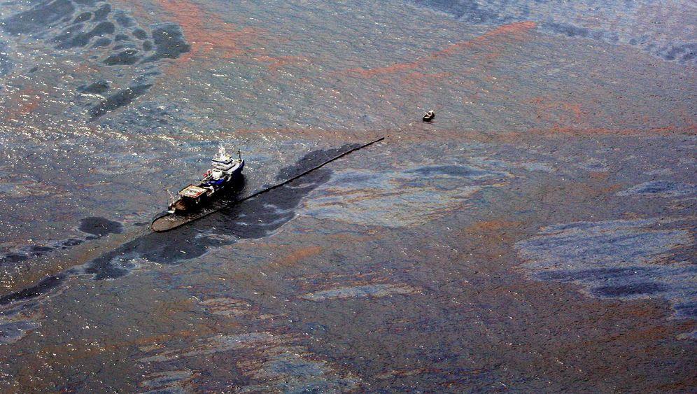 Ölpest im Golf von Mexiko: Der unerbitterte Kampf der Helfer