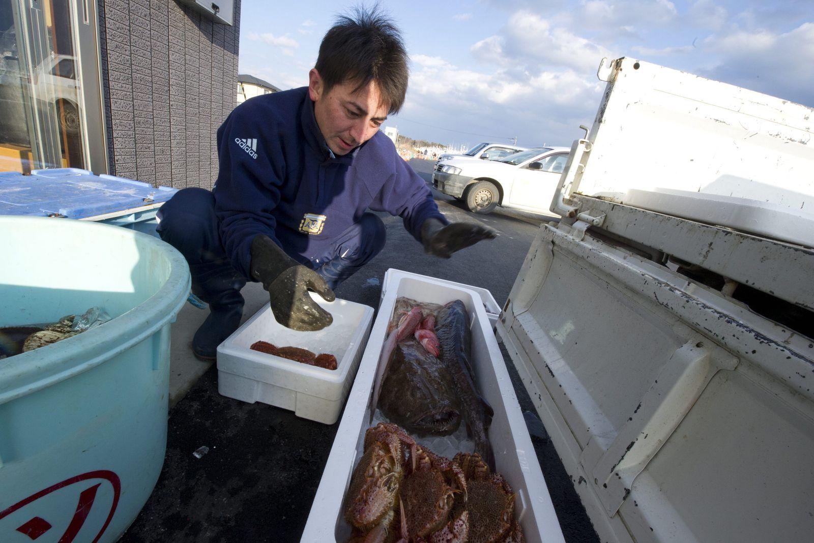 Fukushima / Fisch
