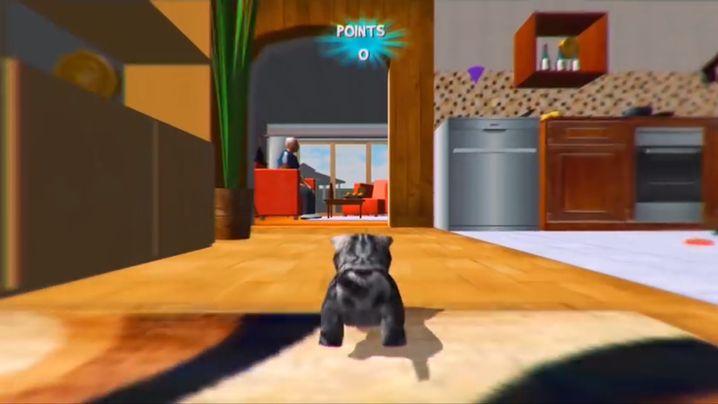 """Bild aus dem """"Cat Simulator"""": Keine Vase ist sicher"""