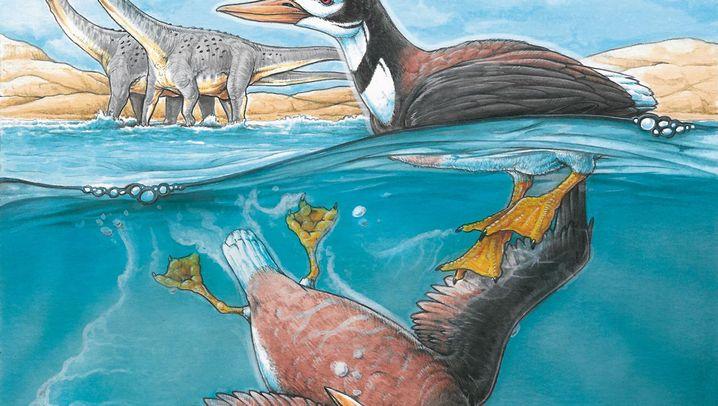 Fossiler Vogelfund: Evolution des Schreis