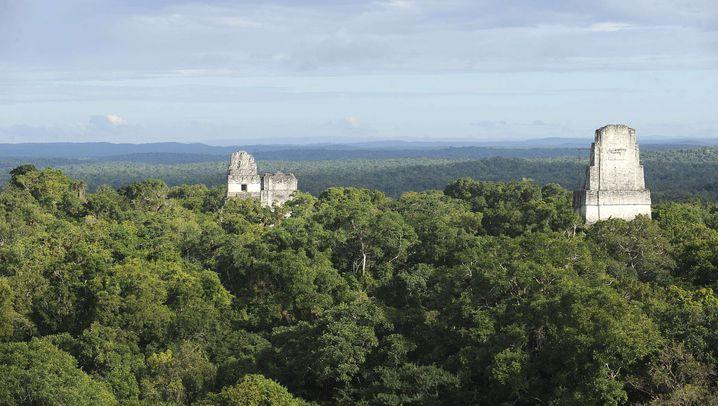 Ausgegraben: Partygäste beschädigten Maya-Tempel
