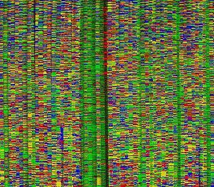 """""""Genom-Karte"""": Ahnenpass, zweite Auflage"""