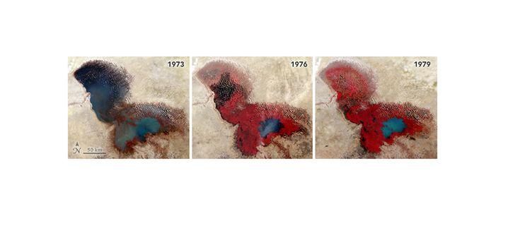 Satellitenaufnahmen des Tschadsees von 1973, 1976 und 1979