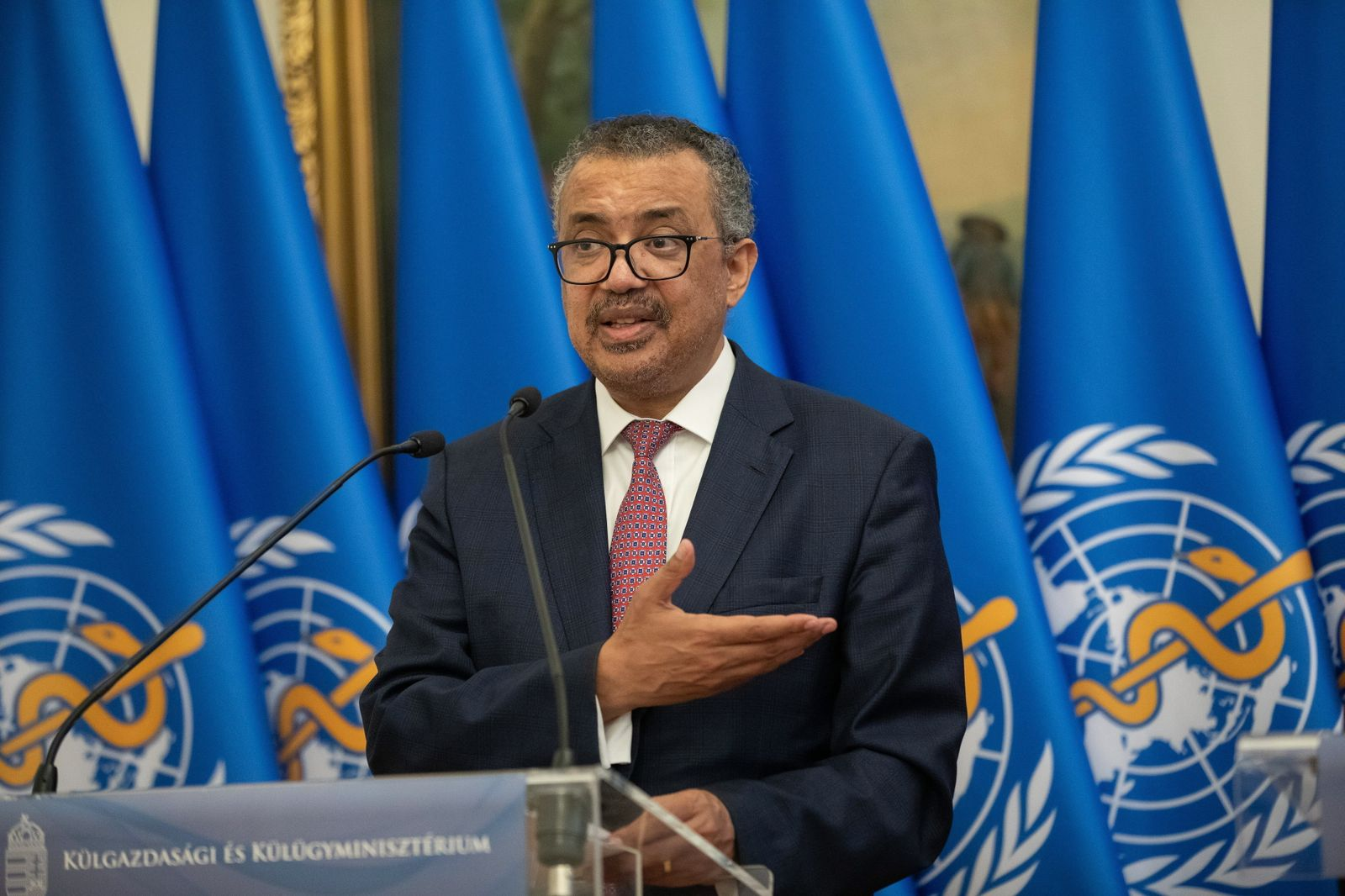 Director-General of WHO in Hungary