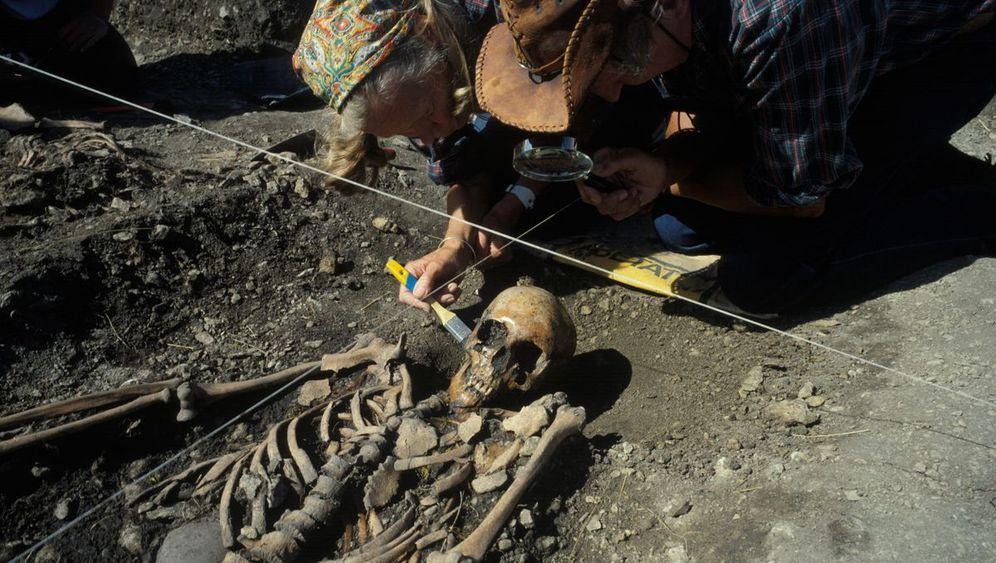 Archäologie: Der Ackerbau kam aus dem Süden