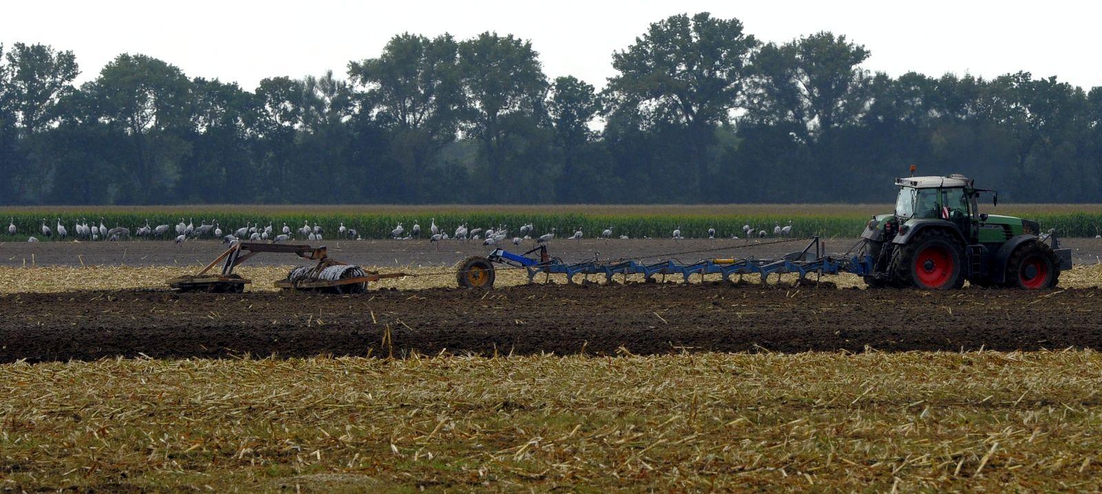 NICHT VERWENDEN Landwirtschaft Polen