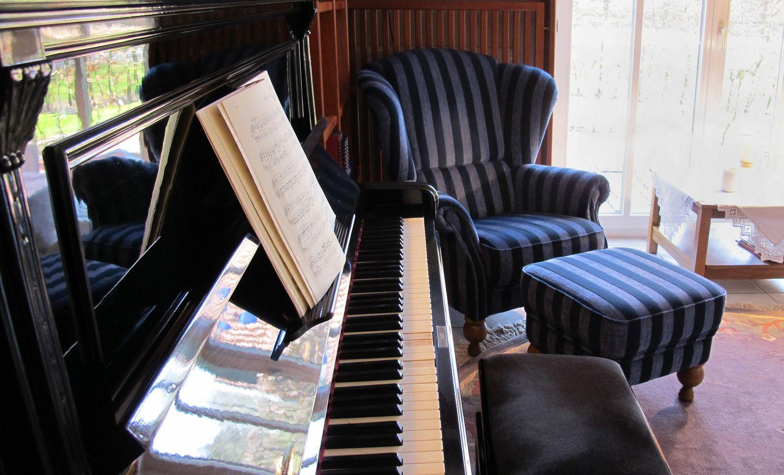 EINMALIGE VERWENDUNG Gute Stimmung im Haus - Klavier und Co. pflegen und lagern